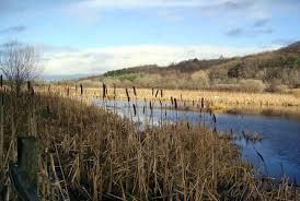 carrs-nature-reserve